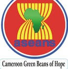 Aseans Cameroon Ltd