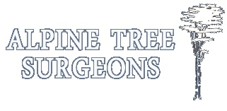 Alpine Tree Surgeons - Basingstoke